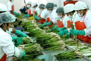 Agroexportaciones peruanas crecieron en valor 8.95% en los primeros nueve meses del año