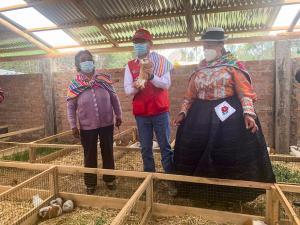 Agroideas entregó bienes a cooperativa de productoras de cuyes en Junín por S/ 401 mil