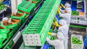 Agrokasa invertirá US$ 20 millones en construcción de planta de tratamiento de aguas residuales en Ica
