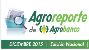 AGROREPORTE DICIEMBRE 2015