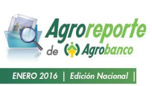 AGROREPORTE ENERO 2016