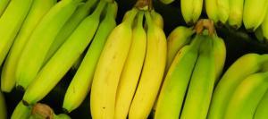 Alemania: encuentran casi 400 kg de cocaína en bananas ecuatorianas