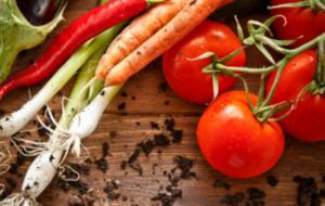 América Latina se prepara para consolidar posiciones regionales en inocuidad de alimentos