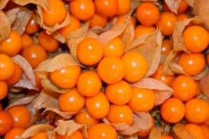 Andean Superfoods espera colocar su aguaymanto procesado en Europa