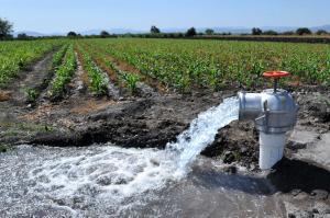 Aprueban tarifas por el uso de agua con fines de riego para el 2020