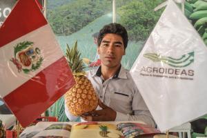 Aprueban vigencia permanente del Programa Agroideas del Minagri