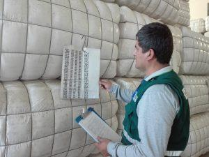 Arequipa lidera exportaciones de tops de pelo alpaca