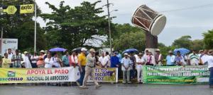 Arroceros de la selva, Cajamarca y Lambayeque realizarán desde hoy paro por 48 horas