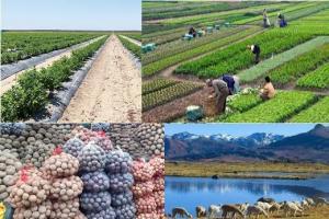 Asuntos Polémicos en la Política Agraria 2021-2026