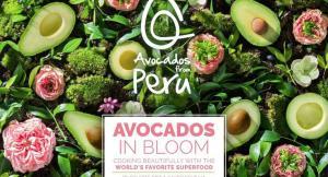 'Avocados from Peru' lanza nuevo recetario electrónico para impulsar consumo de palta en EE.UU.