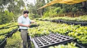 BASF: Venta de agroquímicos crecerá con desarrollo de próximos proyectos de irrigación