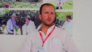 """Benjamín Cillóniz: """"Producción de uva de mesa de Piura crecerá significativamente en la próxima campaña"""""""