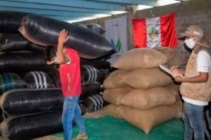 Café fino y orgánico de Ayacucho llegará a mercados de Europa y Norteamérica