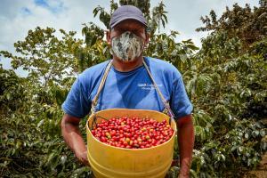 Cafetaleros de Cusco y Cajamarca concretaron negocios por S/ 741 mil