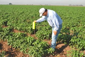 CAMPAÑA SANITARIA PARA AGRICULTORES BUSCA CONTRARRESTAR EFECTOS DE 'EL NIÑO'
