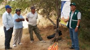 Capacitan en control de mosca de la fruta a productores de ciruela en Zarumilla