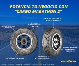 Cargo Marathon 2, el neumático que tu negocio necesita