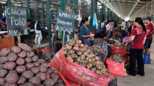 Cerca de 2.320.530 toneladas de alimentos frescos ingresaron al Gran Mercado Mayorista de Lima en 2020