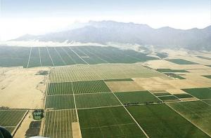 Chavimochic ampliará áreas de irrigación