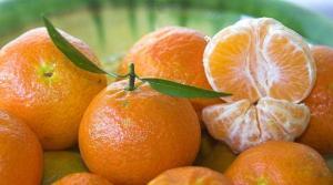 China cosechó 20 millones de toneladas de mandarinas