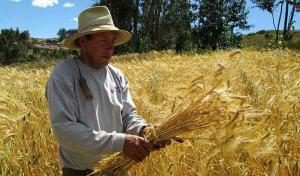 Cillóniz plantea arancel compensatorio a productos agrarios subsidiados que vengan del exterior