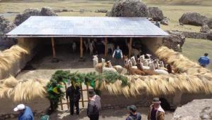 Cobertizos construidos por el Gobierno protegieron a 259.000 cabezas de ganado en 2020