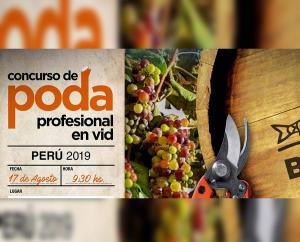 Competencia de Poda Profesional en Vid Bahco Perú