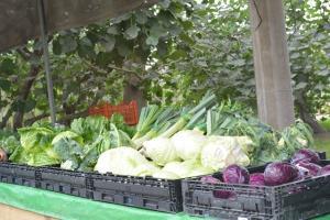 Con más agricultura urbana en la ciudad habría menos escasez y especulación