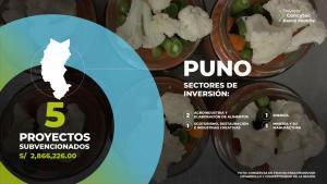 Concytec financia cinco proyectos para impulsar el desarrollo de Puno