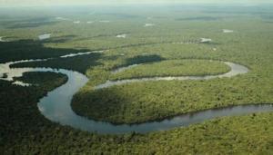Congreso empresarial propondrá nueva visión para la Amazonía peruana al 2050