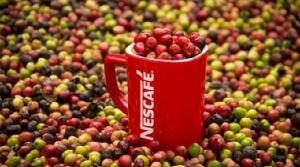 Consumo per cápita de café en Perú cerrará el año en 70 tazas, registrando un aumento de 3%