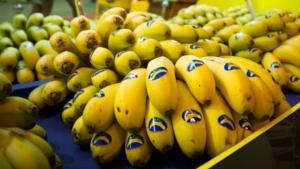 Consumo per cápita de frutas y hortalizas en los hogares españoles crece un 11% hasta septiembre de 2020