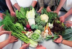 Conveagro solicitó al Gobierno que disponga las compras públicas para la agricultura familiar