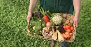 Covid-19 en la industria alimentaria: De la crisis a la nueva realidad