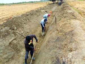 Crearán 76.555 puestos laborales en el agro