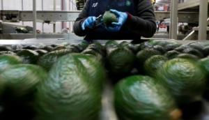 ¿Cuáles fueron las 10 principales agroexportadoras peruanas de 2018 y a cuánto ascendieron sus ventas?