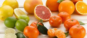 Destacan beneficios saludables de los cítricos