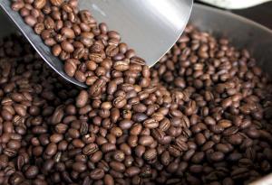 EE.UU., Alemania y  Bélgica son los principales compradores de café peruano en grano
