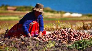 El agricultor está siendo invisibilizado en todo este problema de alta complejidad social