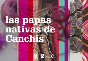 EL PROYECTO ALTURAS BENEFICIARÁ 6500 POBLADORES DE CANCHIS