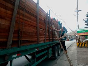 En 2018, Serfor realizó 579 intervenciones y decomisó un equivalente a 76 camiones de madera