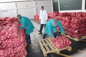 En los últimos meses autorizaron ocho plantas de procesamiento agrícola en Tacna