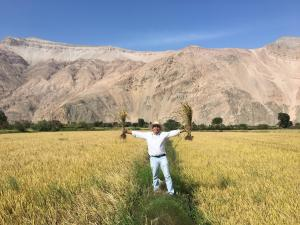 Ensayo en arroz: nutrición balanceada para alcanzar productividad y calidad