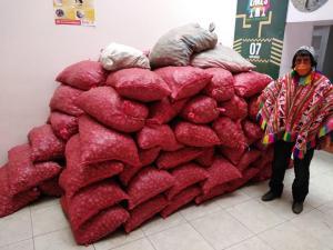 Entregan semillas de variedades nativas de papa a agricultores del distrito cusqueño de lares