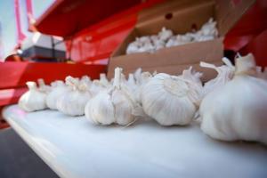Entregaron equipos y maquinaria que permitirá incrementar exportación de ajos en el Valle del Tambo