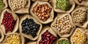 """""""Es necesario convertir a las legumbres en un alimento esencial"""""""