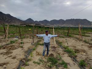 """""""Es necesario implementar el riego tecnificado para reactivar la pequeña y mediana agricultura"""""""