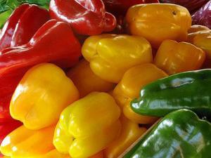Existen las condiciones propicias para exportar pimiento fresco de Perú a Estados Unidos