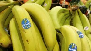 Exportación de bananas de Ecuador se incrementa en primer semestre del año