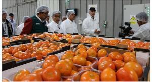 Exportaciones agrícolas frescas alcanzaron los US$ 683 millones en julio de este año